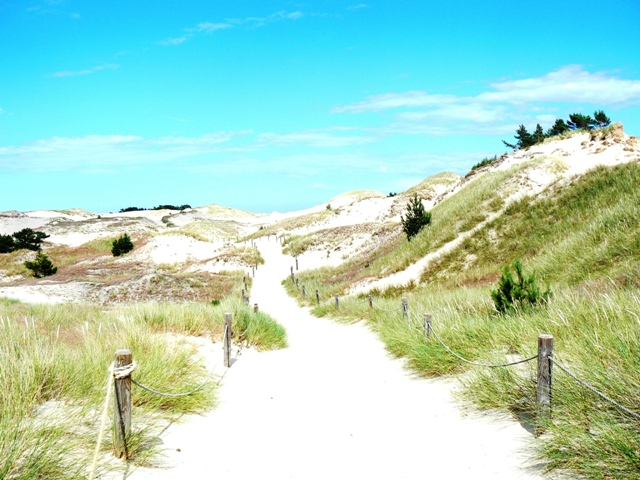 Slowinski National Park - wandering dunes. Pilgrimage to Poland – Hit The Road Travel