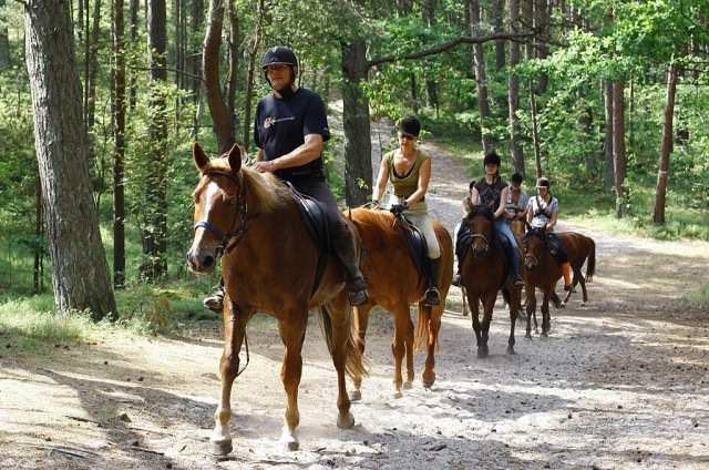 Horse riding. Group tour package – Hit The Road Travel