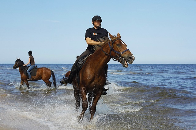Horse riding by the beach. Active travel to Poland, sport tours to Gdansk – Hit The Road Travel