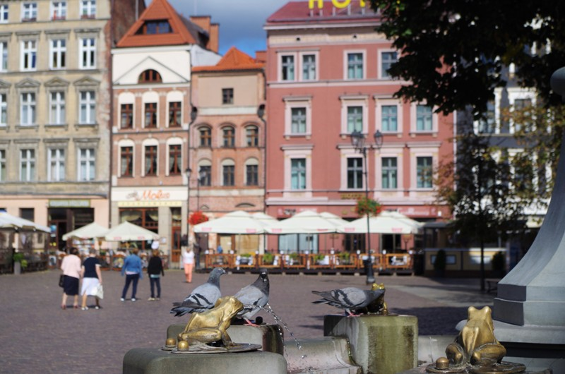 Old Town Market Square in Torun. Tour of Poland – Hit The Road Travel
