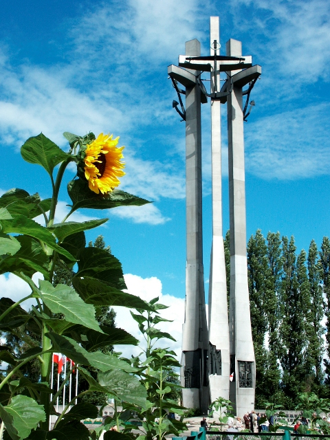 Monument to the Fallen Shipyard Workers of 1970. Gdansk tours by a nostalgic tram – Hit The Road Travel