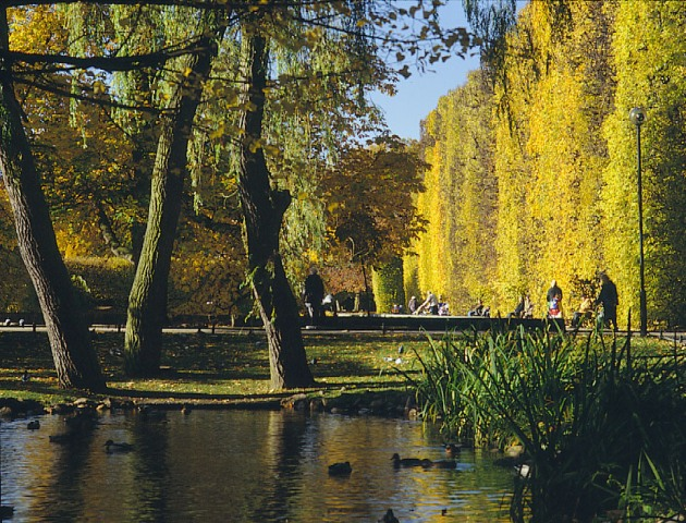 Oliwa Park in Gdansk. Walking tour with a guide in Gdansk – Hit The Road Travel